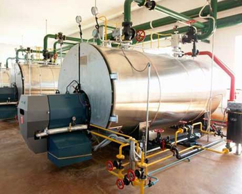 Steam Boiler in Edible Oil Plant